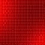 Днепропетровская обл. Посадка 5га. Груши и яблони нашими саженцами типа Книп — Баум от 8 до 14 боковых веток. Высота саженцев 2,4 метра.